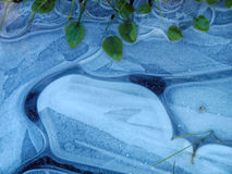 niebieski szczegółów lodu Obrazy Royalty Free