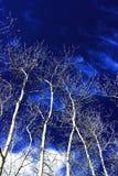 niebieski white Zdjęcie Stock