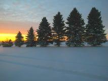 niebieski wschód słońca Fotografia Royalty Free
