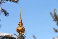 niebieskie asterysków gwiazdkę dekoracji kuli ciemne drzewo Obrazy Stock