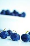 niebieskie jagody zdjęcia royalty free