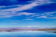 Niebieskie Nieba w Atacama pustyni Fotografia Stock