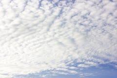 niebieskie niebo ani białe Obrazy Stock