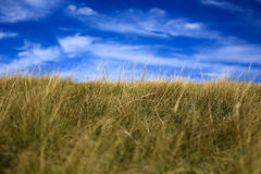Niebieskie niebo białe chmury, zielona trawa Obrazy Stock
