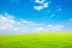 Niebieskie niebo, biel trawa i chmury i Zdjęcia Royalty Free