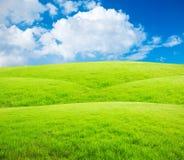 Niebieskie niebo, biel trawa i chmury i Zdjęcie Royalty Free
