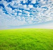 Niebieskie niebo, biel trawa i chmury i Fotografia Royalty Free