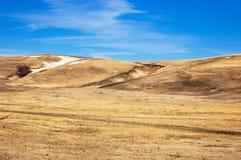 Niebieskie niebo, brown równina Zdjęcie Royalty Free