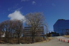 Niebieskie niebo budynki i drzewo obraz stock