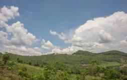 Niebieskie niebo chmurnieje nad lasem obrazy royalty free