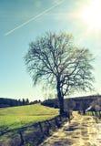 Niebieskie niebo i ślada samolot i droga nigdzie fotografia royalty free