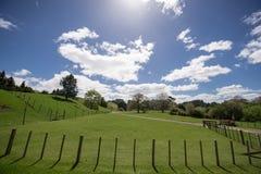 Niebieskie niebo i biała chmury trawa Obrazy Royalty Free