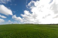 Niebieskie niebo i biała chmury trawa Obrazy Stock