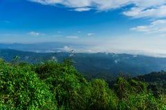 Niebieskie niebo i chmura z łąkowym drzewem Równiny krajobrazowy tło obraz stock