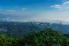 Niebieskie niebo i chmura z łąkowym drzewem Równiny krajobrazowy tło zdjęcia royalty free