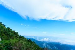 Niebieskie niebo i chmura z łąkowym drzewem Równiny krajobrazowy tło obrazy royalty free