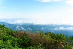 Niebieskie niebo i chmura z łąkowym drzewem Równiny krajobrazowy tło obraz royalty free