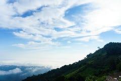 Niebieskie niebo i chmura z łąkowym drzewem Równiny krajobrazowy tło zdjęcia stock
