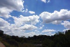 Niebieskie niebo i chmury na jasnym lato ranku Fotografia Stock