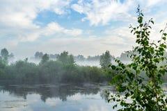 Niebieskie niebo i mgłowy jeziorny las obraz stock