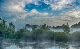 Niebieskie niebo i mgłowy jeziorny las zdjęcia royalty free
