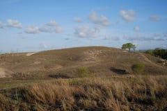 Niebieskie niebo, piękne chmury nad sawanna Lolomogho wzgórze, południowo-zachodni Sumba granica z Zachodnim Sumb zdjęcia stock