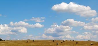 niebieskie niebo pola obraz stock