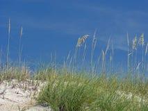 niebieskie niebo wydm biały piasek Obraz Royalty Free