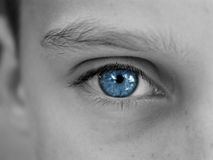 niebieskie oczy obrazy royalty free