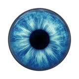 niebieskie oko royalty ilustracja
