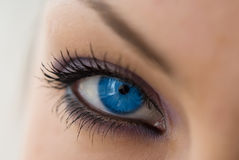 niebieskie oko Obraz Stock