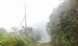 niebla imagen de archivo