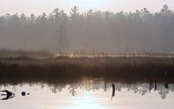 Niebla apacible en una mañana brumosa en el pantano Foto de archivo