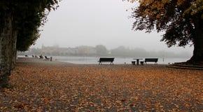 Niebla colorida de Autumn Falling Leaves With Morning imagenes de archivo