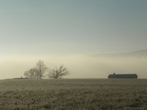 Niebla de Frost durante una mañana del invierno en una granja en el país Imagen de archivo libre de regalías