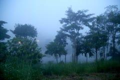 Niebla de Khaokho Niebla del mar imagen de archivo libre de regalías