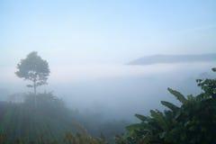 Niebla de Khaokho Niebla del mar imágenes de archivo libres de regalías