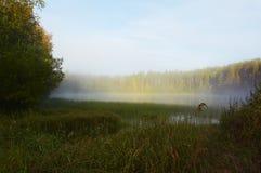 Niebla de la mañana Imagenes de archivo