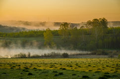 Niebla de la mañana alrededor del lago crezca el abedul Imagen de archivo