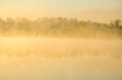 Niebla de la mañana alrededor del lago crezca el abedul imagenes de archivo