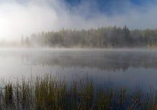 Niebla de la mañana del otoño Fotografía de archivo
