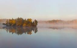 Niebla de la mañana en el lago del bosque Fotos de archivo libres de regalías