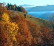 Niebla de la mañana en el otoño cárpato Fotos de archivo libres de regalías