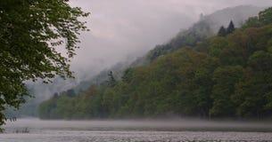 Niebla de la mañana en el río foto de archivo libre de regalías