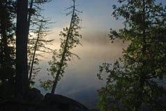 Niebla de la mañana en el yermo fotos de archivo libres de regalías