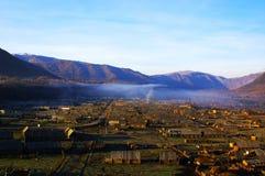 Niebla de la mañana en los abedules Foto de archivo