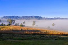 Niebla de la mañana en la montaña Fotos de archivo