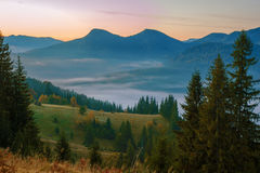 Niebla de la mañana en montaña Imagen de archivo libre de regalías