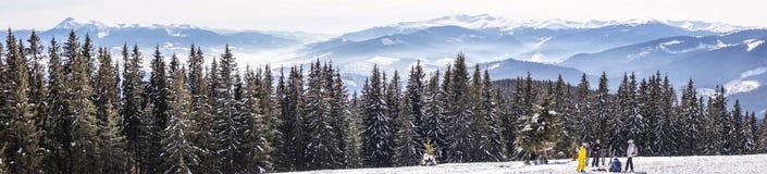 Niebla de la mañana Esquiadores en el paisaje nevoso de la cuesta y del invierno en las montañas cárpatas La naturaleza salvaje d Fotografía de archivo