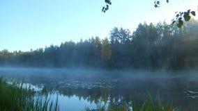 Niebla de la mañana sobre el agua en los rayos del sol naciente almacen de metraje de vídeo